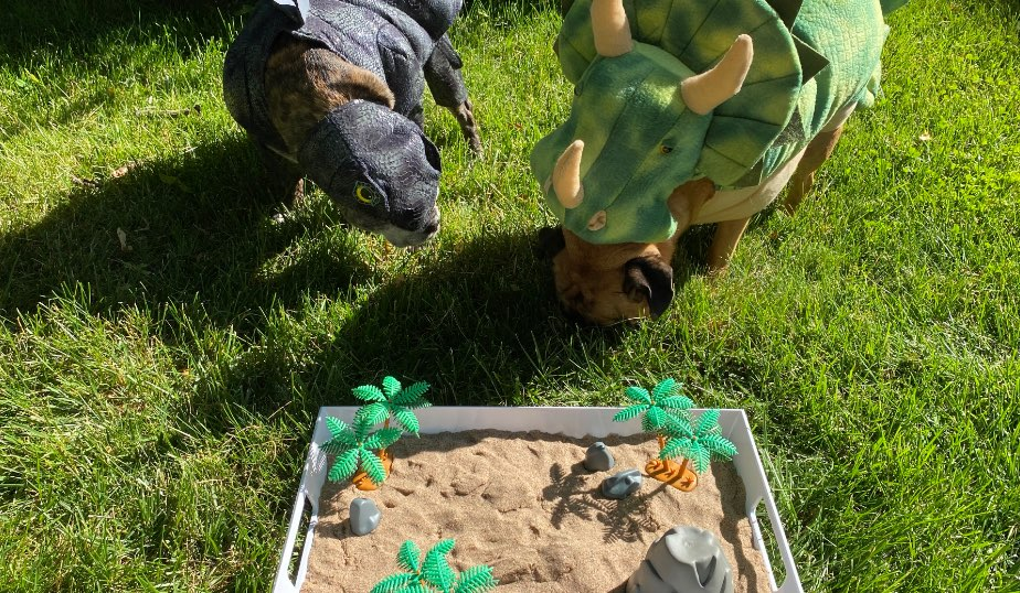 completed dino discovery box diy activity for kids