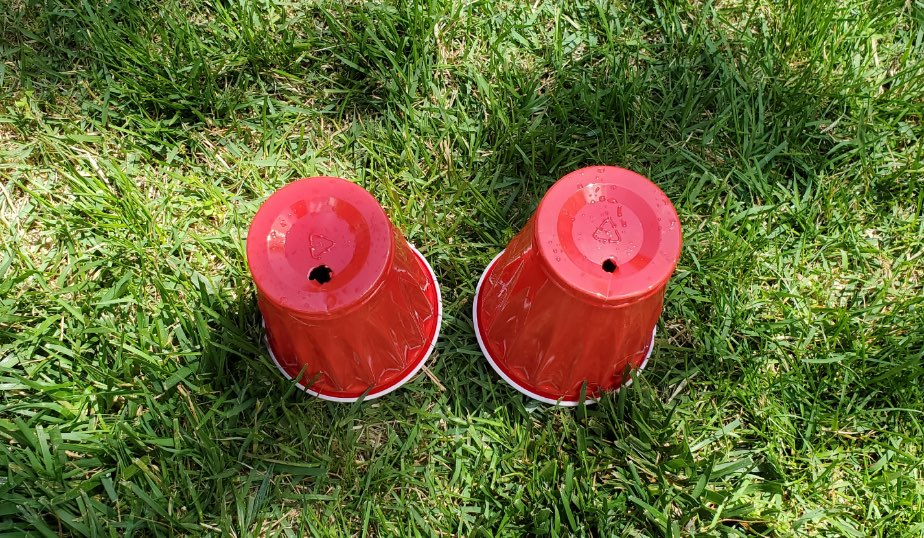 red plastic cups with holes cut in the bottom