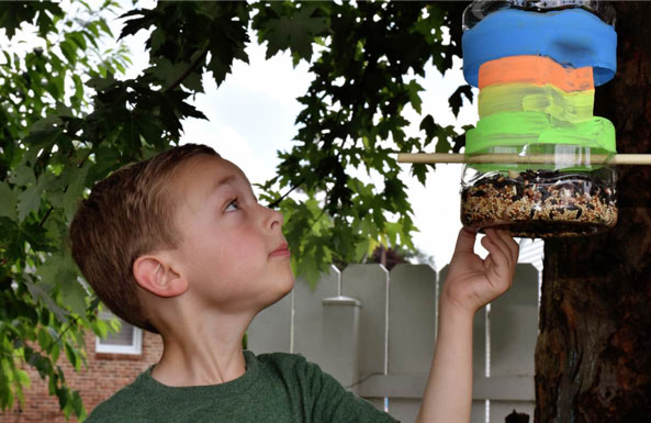 build your own bird feeder for kids