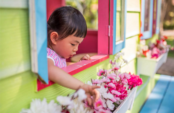 explore and play in playhouses and climbers