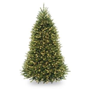 Christmas trees image