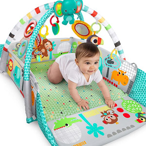 baby gyms & playmats image